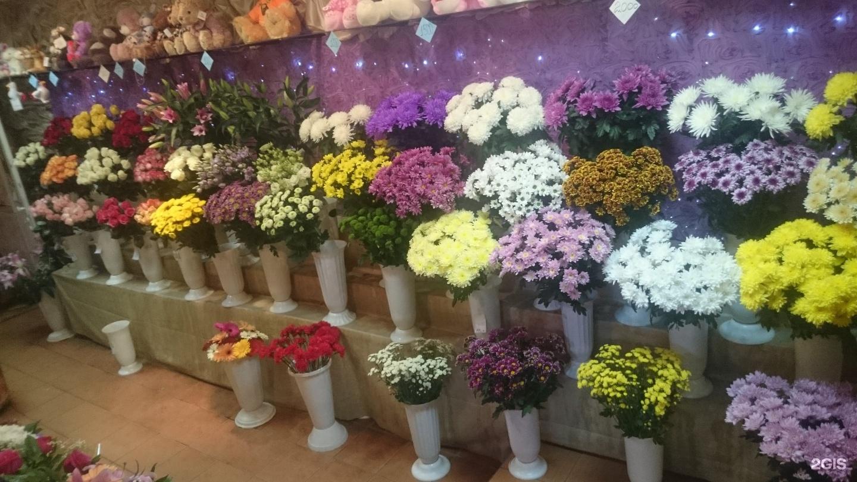 Камелия оптовый магазин цветов, свадебный