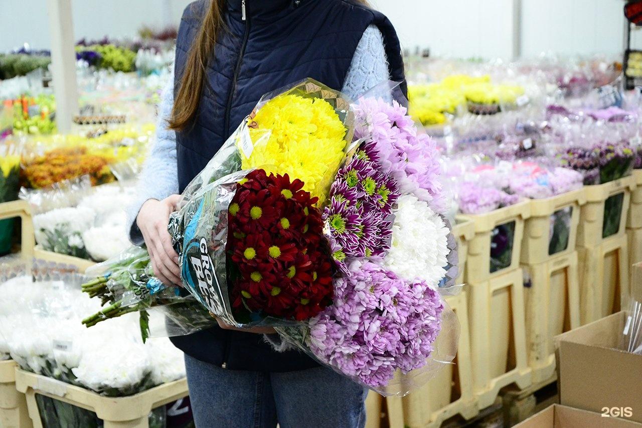 Роз новосибирске, казань цветы оптом роторная