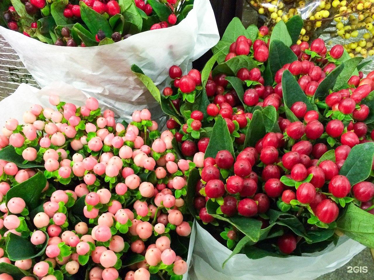 Оптовая база цветов ярославль богдановича, купить оптом алматы