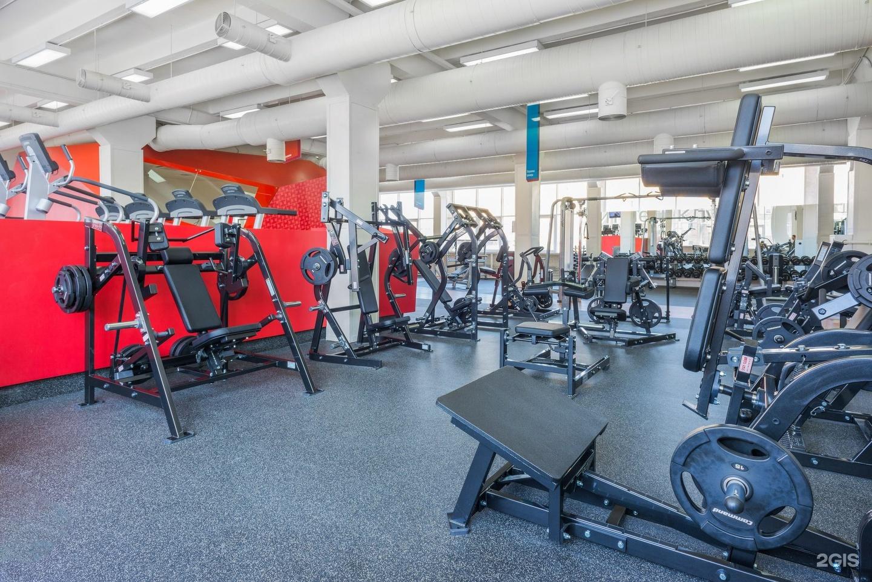 Тренажерный зал, спортивные танцы, черлидинг, йога, зумба, стретчинг, фитнес, офп.