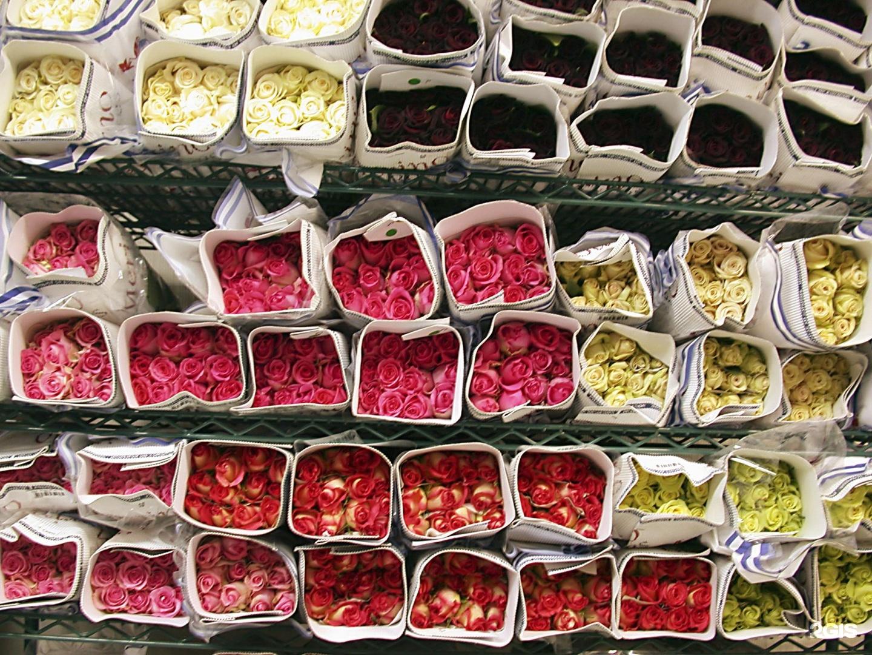Цена цветы оптом украина купить, цветы