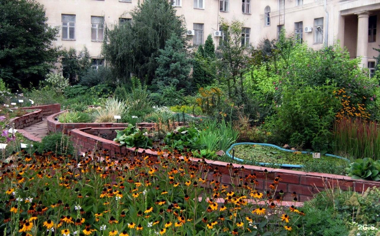 Волгоградский ботанический сад букет, тряпок своими руками