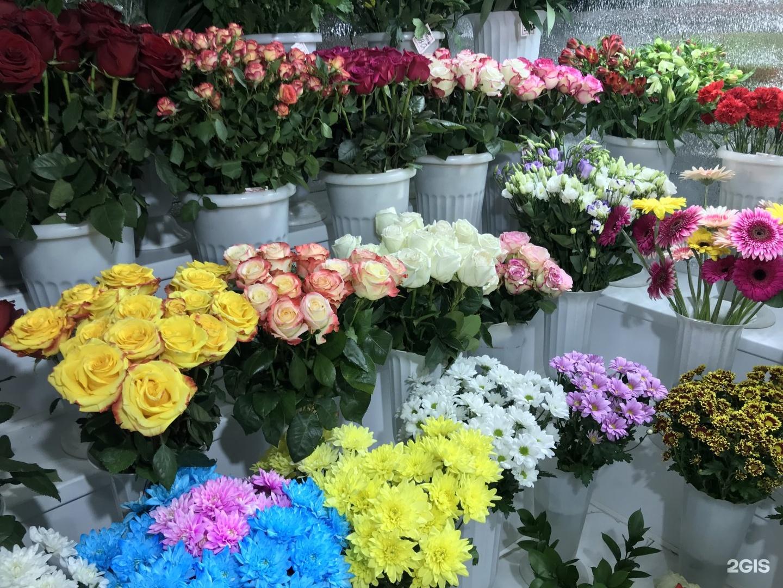 Цветов герберы, магазин цветов онлайн тверь